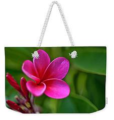 Plumeria - Royal Hawaiian Weekender Tote Bag
