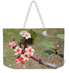 Weekender Tote Bag featuring the photograph Plumeria Flowers by Jingjits Photography