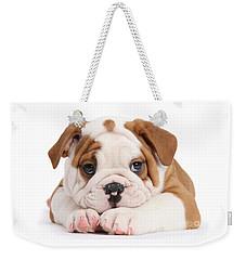 Po-faced Bulldog Weekender Tote Bag
