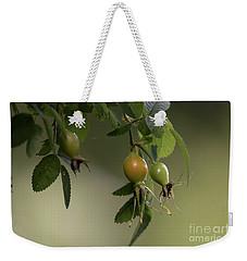 Pods Weekender Tote Bag by Rod Wiens