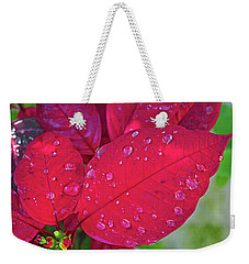 Poinsettia Weekender Tote Bag
