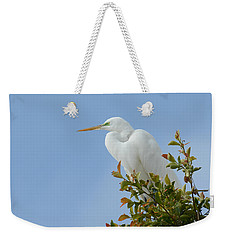 Weekender Tote Bag featuring the photograph Poised 2 by Fraida Gutovich