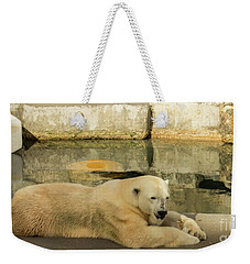 Polar Bear Poolside Weekender Tote Bag