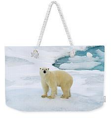 Polar Gaze Weekender Tote Bag
