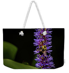 Weekender Tote Bag featuring the photograph Pollen Collector 3 by Jay Stockhaus
