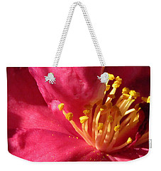 Weekender Tote Bag featuring the photograph Pollen Pregnant 2 by Robert Knight