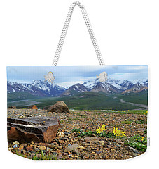 Weekender Tote Bag featuring the photograph Polychrome Pass, Denali by Zawhaus Photography