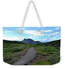Weekender Tote Bag featuring the photograph Polychrome Pass Trail, Denali by Zawhaus Photography
