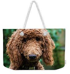 Poodle Pup Weekender Tote Bag