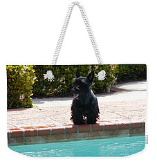 Weekender Tote Bag featuring the photograph Pool Daze by Diane Ferguson