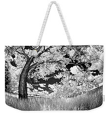 Weekender Tote Bag featuring the photograph Poplar On The Edge Of A Field by Dan Jurak