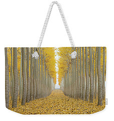 Poplar Tree Farm One Foggy Morning In Fall Season Weekender Tote Bag