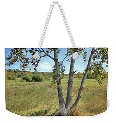 Poplar Tree In Autumn Meadow Weekender Tote Bag