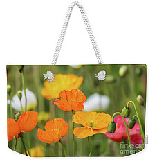 Weekender Tote Bag featuring the photograph  Poppies 1 by Werner Padarin