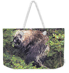Porcupine In A Fir Tree Weekender Tote Bag