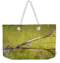 Weekender Tote Bag featuring the photograph Portal May 2016 by Leif Sohlman