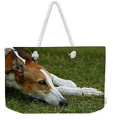 Portrait Of A Greyhound - Soulful Weekender Tote Bag by Angela Rath