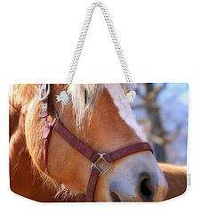 Weekender Tote Bag featuring the photograph Portrait Of A Haflinger - Niko by Angela Rath