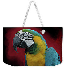 Portrait Of A Parrot Weekender Tote Bag by Jeff Burgess