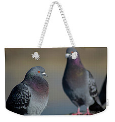 Portrait Of A Pigeon Weekender Tote Bag by Lora Lee Chapman