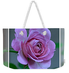 Portrait Of A Rose Weekender Tote Bag by Kathy Eickenberg