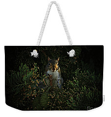 Portrait Of A Squirrel Weekender Tote Bag