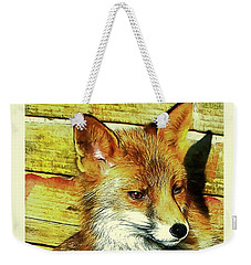 Portrait Of An Urban Fox Weekender Tote Bag
