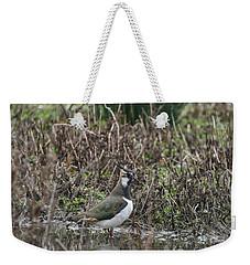 Portrait Of Beautiful Lapwing Bird Seen Through Reeds On Side Of Weekender Tote Bag