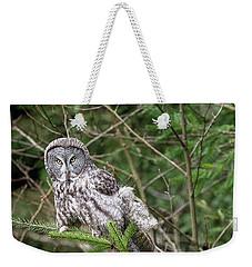 Portrait Of Gray Owl Weekender Tote Bag