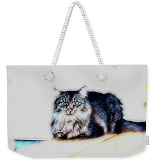 Portrait Of Maine Coon, Mattie Weekender Tote Bag
