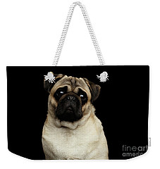Portrait Of Pug Weekender Tote Bag