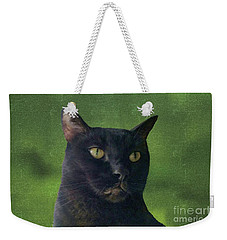 Weekender Tote Bag featuring the photograph Portrait Of Salem The Cat by Lee Boyd and Janette Boyd