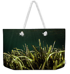Posidonia Weekender Tote Bag