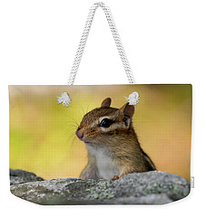 Weekender Tote Bag featuring the photograph Posing Chipmunk by Betty Pauwels