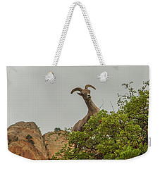 Posing For The Camera 2 Weekender Tote Bag
