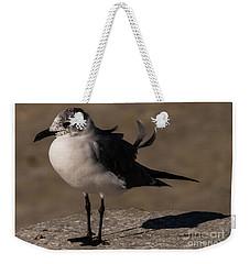 Posing Laughing Gull Weekender Tote Bag