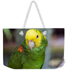 Posing Parrot Weekender Tote Bag by Kenneth Albin