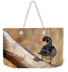 Posing Wood Duck Weekender Tote Bag
