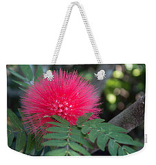 Powderpuff Weekender Tote Bag by Arlene Carmel