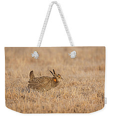 Weekender Tote Bag featuring the photograph Prairie Chicken 7-2015 by Thomas Young
