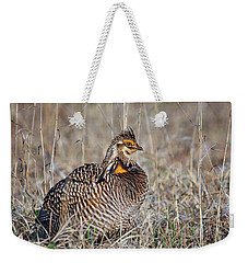 Weekender Tote Bag featuring the photograph Prairie Chicken - Portrait by Nikolyn McDonald