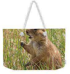 Weekender Tote Bag featuring the photograph Prairie Dog by Brenda Jacobs