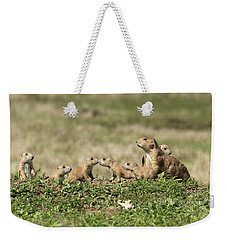 Weekender Tote Bag featuring the photograph Prairie Dog Family 7270 by Donald Brown