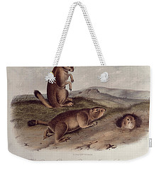 Prairie Dog Weekender Tote Bag by John James Audubon