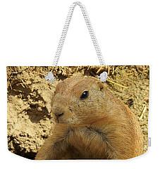 Prairie Dog Peek Weekender Tote Bag by Robin Regan