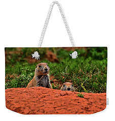 Weekender Tote Bag featuring the photograph Prairie Dogs 004 by George Bostian