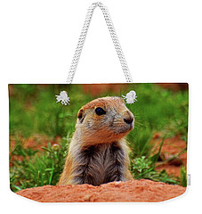 Prairie Dogs 007 Weekender Tote Bag by George Bostian