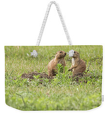 Weekender Tote Bag featuring the photograph Prarie Dog Lovebirds by Brenda Jacobs
