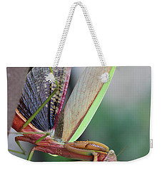 Weekender Tote Bag featuring the photograph Praying Mantis by Stacey Zimmerman