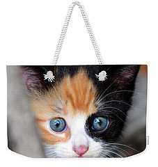 Weekender Tote Bag featuring the photograph Precious by David Lee Thompson